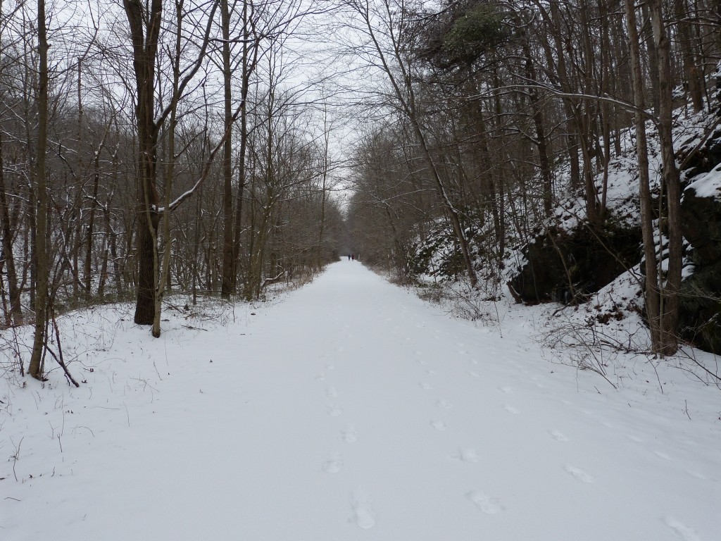 Digital Image of the NCR Trail - Winter Along Little Falls
